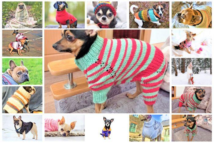 Вязаная одежда для собак своими руками